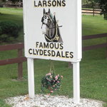 Larson's Famous Clydesdales