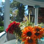  porch flowers in the morning sun