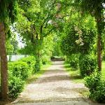 the tranquil garden and pathway that leads to HH