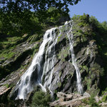 Foto de Powerscourt Waterfall