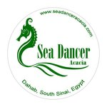 Sea Dancer Acacia