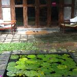  The pond Infront of our Room