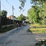 the bicycle path to Budapest