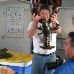  Ed and 34-inch lobster