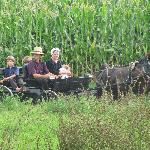  Amish Family