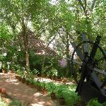 Somatheeram Ayurveda Resort