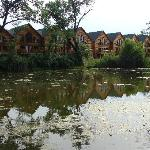 ภาพถ่ายของ Grizzly Jack's Grand Bear Resort