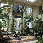 Photo of George Eastman House