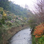 Dunedin Botanic Garden