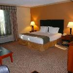 Foto de Holiday Inn Express Hotel & Suites-DFW