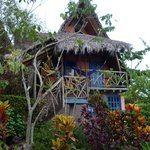bamboo house at azuluna
