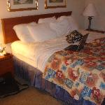 Φωτογραφία: La Quinta Inn St. Louis Hazelwood- Airport North