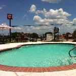 BEST WESTERN Lake Conroe Inn resmi