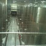  processing wines