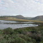 Elfin Forest Preserve