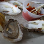Prince Edward Island Oysters with cocktail sauce(horseradish)