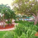 Foto de Hyatt Windward Pointe