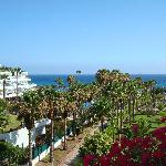 Photo de Hotel Riu Palace Tenerife