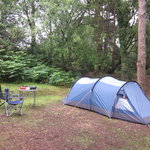  Camping in the Glades (1)