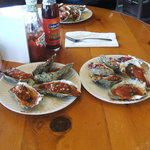 B-B-Q Oysters, YUMMY!!!