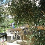 Photo of Agriturismo I Pipetta