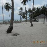 Foto van Seashells Beach Resort