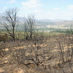 Helderberg Nature Reserve