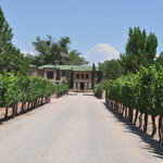 Casa Rondena Winery