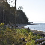 Rathtrevor Beach Provincial Park