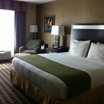 Holiday Inn Express Hotel & Suites Limerick照片