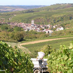 Photo of Chablis Vititours