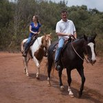 GUIDED 90 MINUTE HORSEBACK