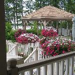  Different shot of the gazebo