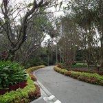 Roma Street Parkland