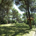 Cieloverde Camping Village