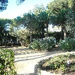 Villa La Pineta