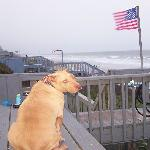  Bella at Surf City, NC