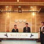  Hotel Stallions