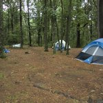  Group camp site