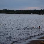 evening swim in Lake Bemidji