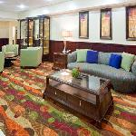Foto di Holiday Inn Express Hotel & Suites Lubbock West
