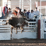 Rodeo de Santa Fe