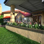 BEST WESTERN PLUS Sun Country Medicine Hat