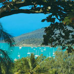 Whitsunday Organic B&amp;B