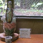 Akiko's Buddhist Bed and Breakfast Foto