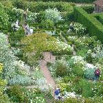 White Garden from the tower