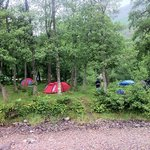 Red Squirrel Campsite Glencoe