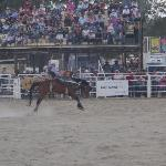 The Warwick Rodeo