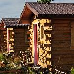 Foto di EarthSong Lodge - Denali's Natural Retreat