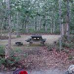 Bild från Martha's Vineyard Family Campground